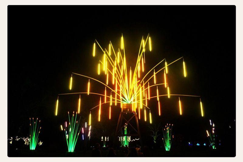 Night Lights Hanging Out Kew Gardens Taking Photos