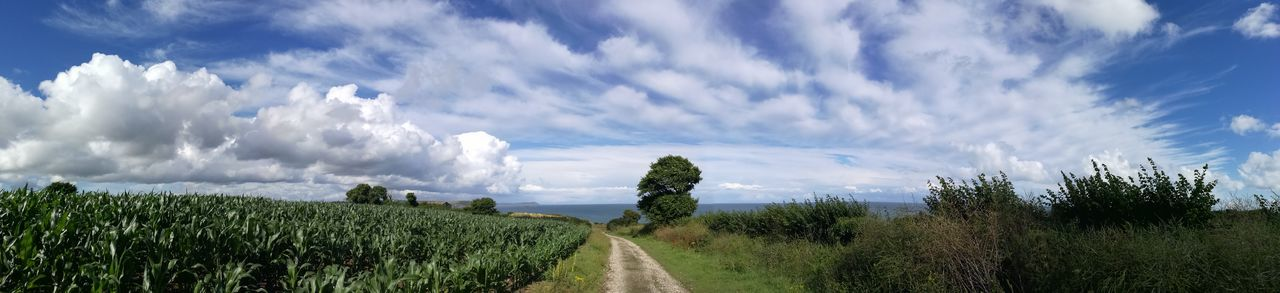 Connected By Travel Cloud - Sky Rural Scene Beauty In Nature Landscape Day Field Outdoors Sky Nature Scenics No People Tranquility