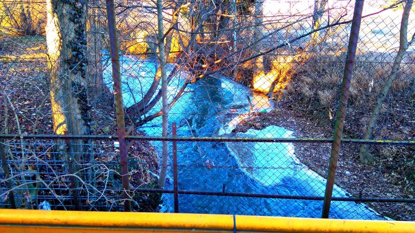 Made by Sony Xperia M4 Aqua Arena Beautiful Beauty Bridge City Cold Falco KC Frozen Girl Green Grass Ice River Savaria Street Streets Szombathely Walk Walking Winter
