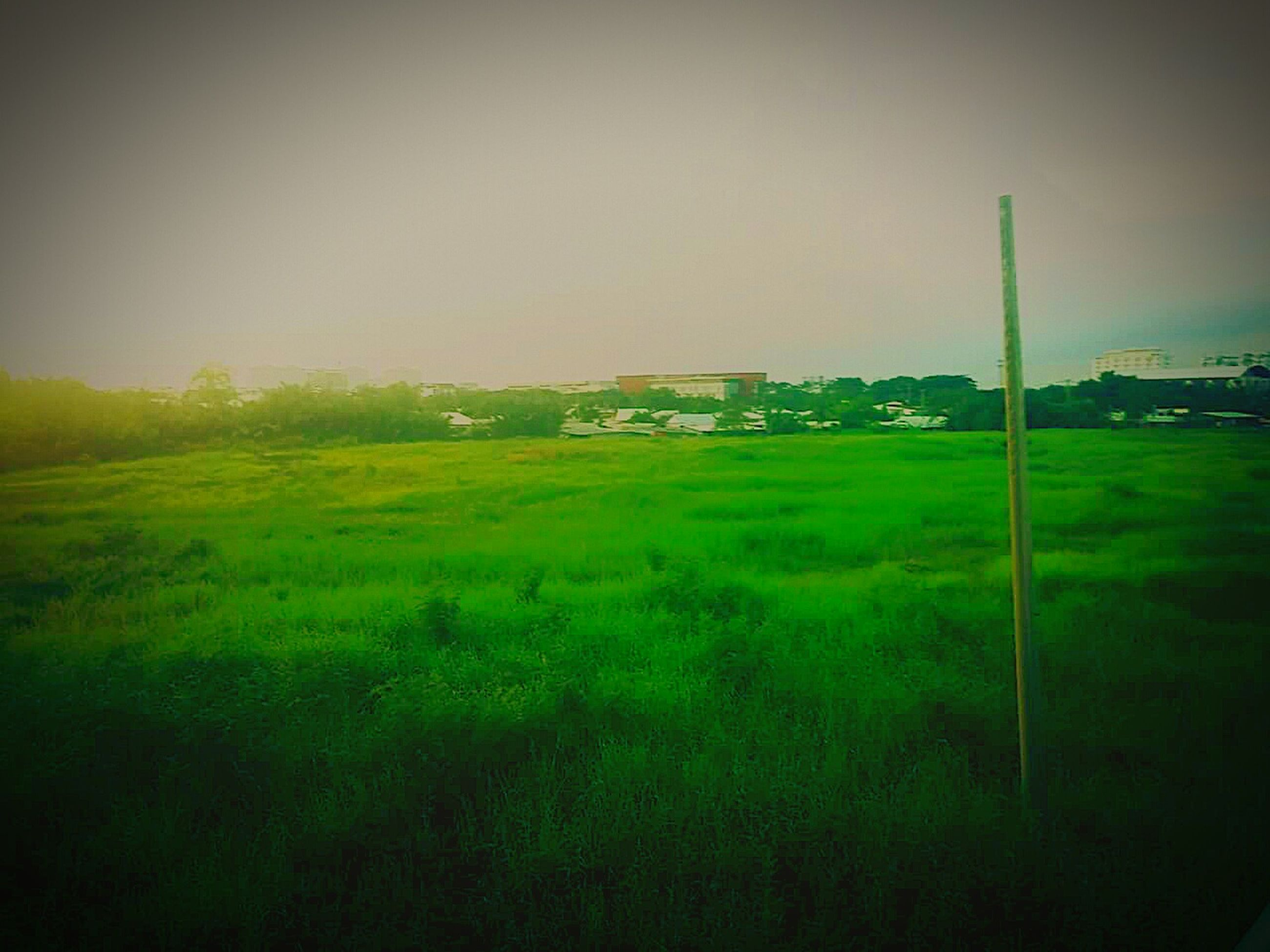 grass, field, green color, grassy, built structure, building exterior, architecture, landscape, clear sky, copy space, tranquility, nature, sky, tranquil scene, growth, house, outdoors, no people, beauty in nature, day