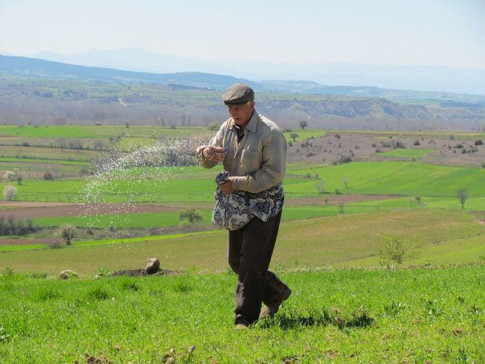 Senior man sprinkling fertilizer on farm