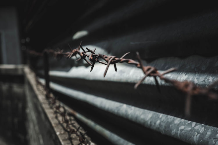 Rusty barbed wire at night