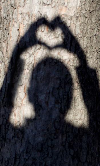verda - un albero per amore Bark Bark Texture Close-up Day Hands Head Shadow Heart Heart Shadow Heart Shape Human Shadow Love Shadow Textured  Tree Valentine's Day  Valentines Day Valentino Cuore Amore San Valentino