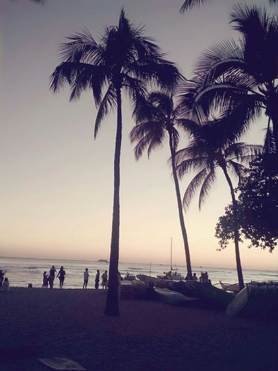 Can't get enough of Honolulu, Hawaii endless Sun and Sunshines heck the place is Paradise !
