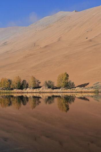 1203 sumu jaran lake's western megadune reflected on mirroring water. badain jaran desert-china.