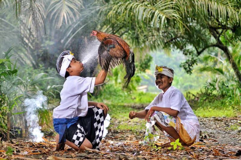 Friends playing with chicken in farm