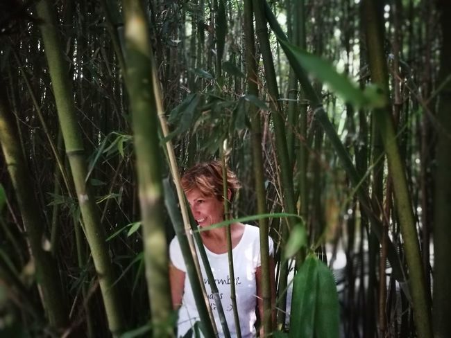 One Woman Only Only Women One Person Mature Adult People Adult Outdoors Adults Only Women Day One Mature Woman Only Headshot Blond Hair Nature Forest Human Body Part Tree Bamboo Bamboo Forest Bamboo Grove Beautiful Woman Smile Smiling Love Lovely