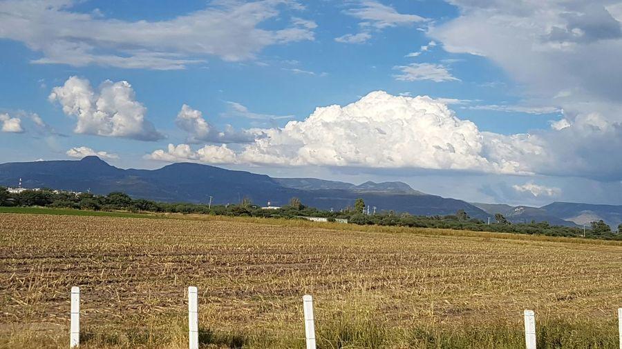 Cloud - Sky Agriculture Sky Rural Scene No People Day Traveling Travel Destinations Landscape Rural Road Rural Scenes Rural Landscape Colors