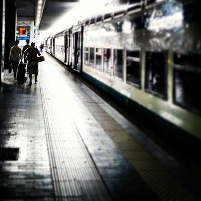 Milano station Railway Railwaystation Trainstation Milano Italotreno Ig_asti_ Igmilano Ig_milan Backlight Igtrain