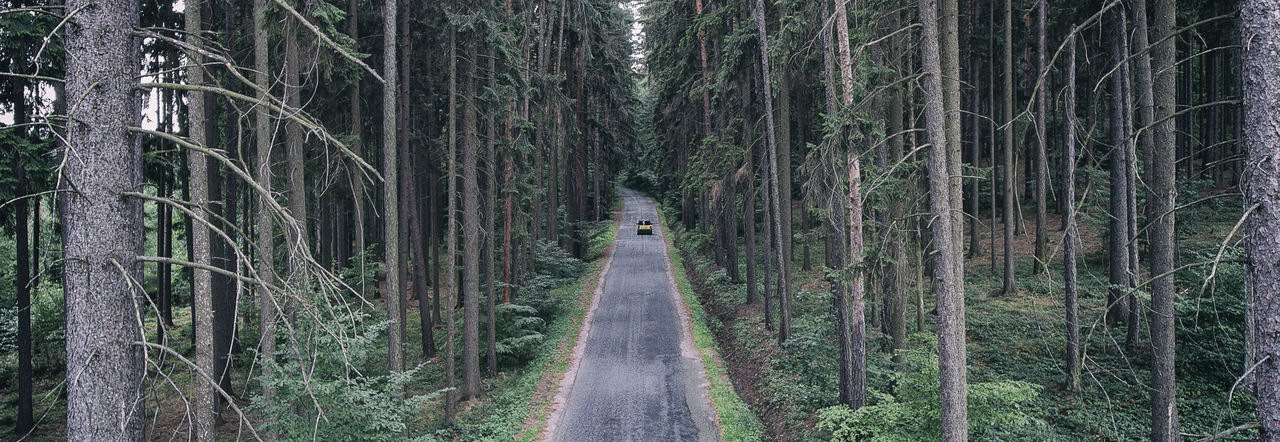 Drone  Green Nature Road Tree Trees Above Bare Tree Beauty In Nature Car Day Forest Forest Photography Nature No People Outdoors The Way Forward Tree