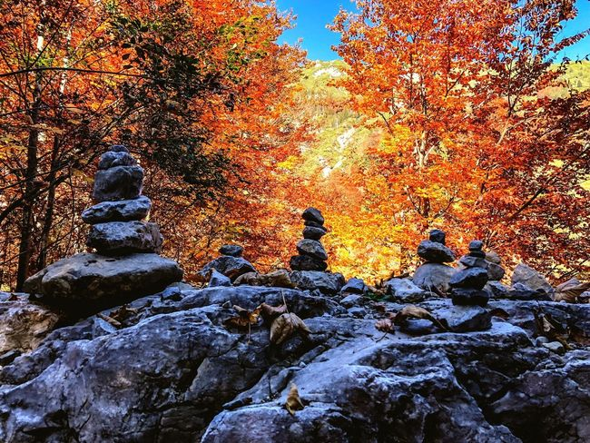 The trees are on Fire 🔥 Nature Photography Hikingphotography Indiansummer Goldener Oktober Autumn colors Autumn No People Nature Beauty In Nature Tranquility Sunset Sky Outdoors Creativity Tranquil Scene Scenics - Nature Orange Color Rock Tree Day Plant Solid A New Beginning
