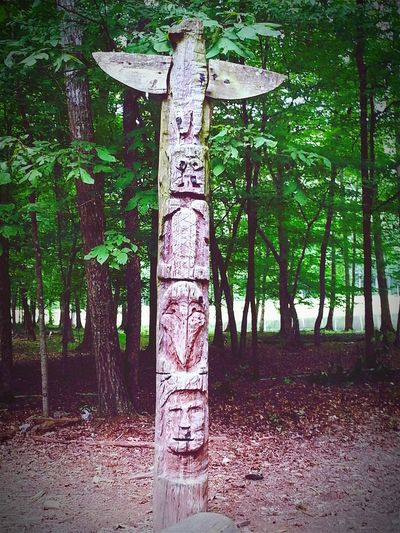 Camp Sidney Dew Camping Adventure Camp Totem Pole Green Trees Wood Wood Carving