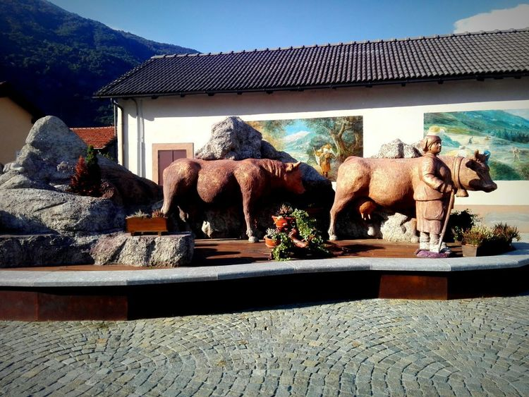 Elephant Sculpture Water Statue Sky Mountain Rocky Mountains