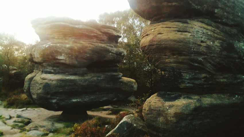 Hiking Nidderdale Tourism Brimhamrocks Brimham Rocks Yorkshire Outstanding Natural Beauty North Yorkshire Travel Destinations Outdoor Pursuit Brimham Rocks National Trust 🇬🇧 Rock - Object The Week On EyeEm Brimham Moor Rock Formation Day No People Tree Nature Outdoors Beauty In Nature Close-up Sky