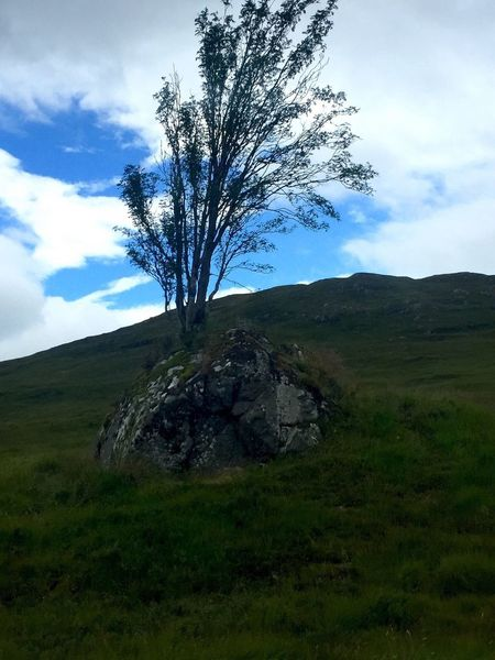 Green Grass Outdoors Outdoor Photography Scenics Beauty In Nature Blue Sky And Clouds Bridge Of Orchy Today In Scotland Tree_collection  Nature Non-urban Scene Sky Tranquil Scene Blue Day Remote Rural Scene Landscape