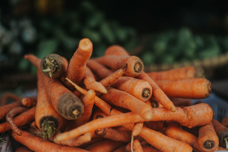 High angle view of carrots