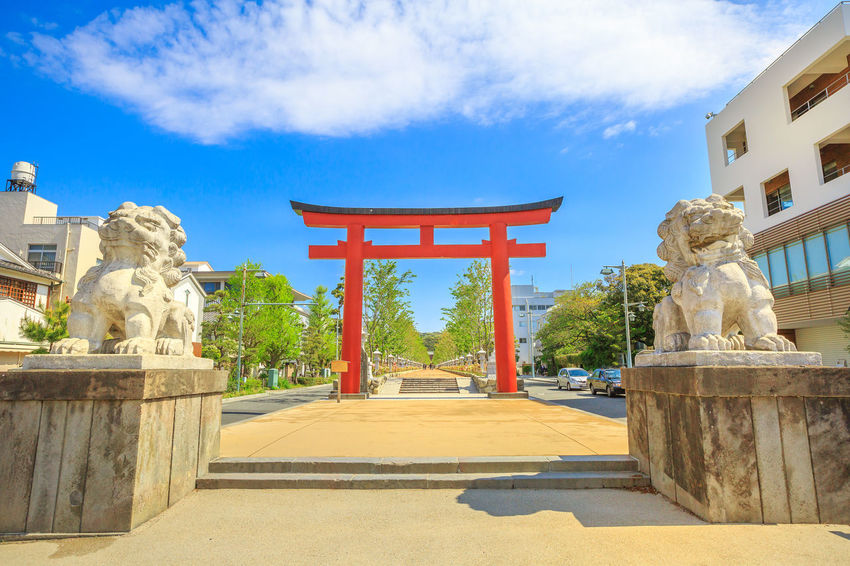 After Torii gate begins the Dankazura, a pathway flanked by cherry trees leading to Tsurugaoka Hachiman shinto sanctuary in Kamakura, Japan. Wakamiya-oji street offers spectacular landscapes in spring Kamakura, Japan - April 23, 2017: Komachi-dori Street, the shopping street outside Kamakura station. The popular touristic street is in ancient city of Kamakura with historic restaurants and stores. Dankazura Japan Japan Photography Japanese  Japanese Culture Japanese Temple Kamakura Kamakura Daibutsu Kamakura Japan Kamakura Station Path Road Shrine Shrine Of Japan Shrines & Temples Shrines And Temples Statue Wakamiya-Oji WakamiyaOji Kamakura Sea Pathway Street Temple Wakamiya