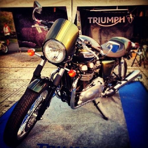 นี่มันมอไซค์ในอุดมคติ Triumph Thruxton Pattaya Bike bikeweek