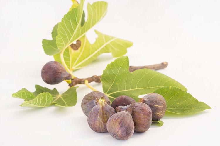 Close-up of fresh fruits against white background