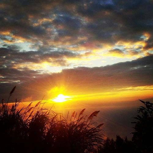 Kemilau Senja.. Sunset Twilight Scattered Clouds Horizon Hill Top Nature Fading Light Forest Fog LovelyIndonesia