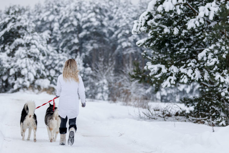 Rear view of woman with dog on snow