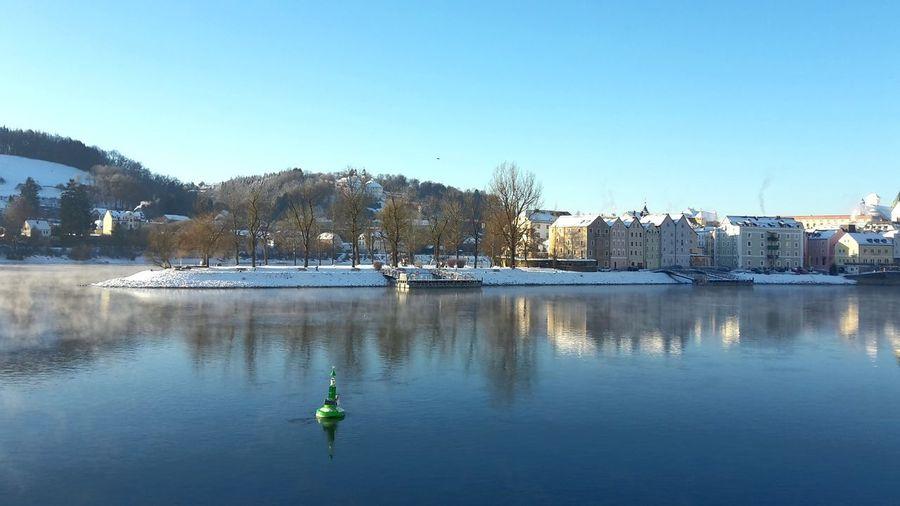 Ortsspitze Passau Passau, Bayern River Fluss Danube Donau Winter Blau Blue Water Clear Sky Tree Sky Architecture