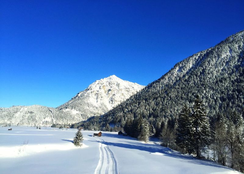 Snow Blue Winter Nature Mountain Cold Temperature EyeEmNewHere Germany Europe Alps AlpsMountain Alps Germany Alps Bavaria cClear SkybBeauty In NaturesScenicstTranquil ScenedDaytTreeoOutdoorsrRoadnNo PeopletTranquilitymMountain RangesSky