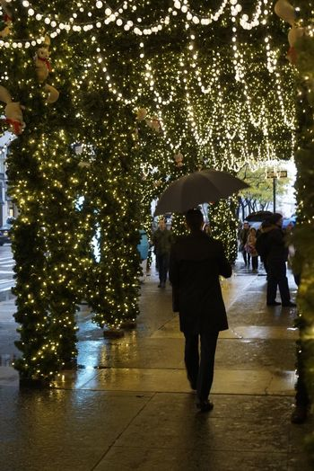 Tree Rain Walking City Outdoors Water People Adult Day One Person Building Exterior New York City New York Rainy Days Rain Newyorkcity Lord And Taylor Department Store 5th Ave 5th Avenue 5th Avenue, NYC Christmas Lights Christmas Decoration