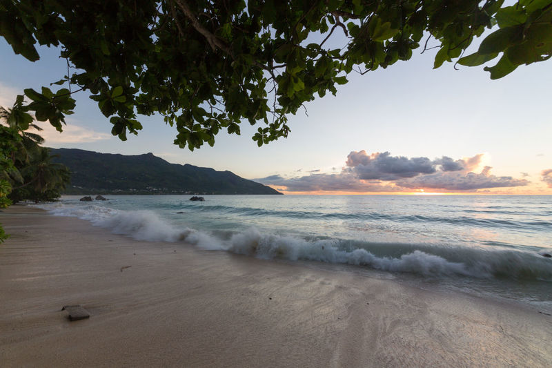 La Digue Anse Lazio Anse Source D'argent Bay Of Water Beach Beauty In Nature Coastline Day Landscape Mahé Mountain Nature No People Outdoors Praslin Seychelles Sand Scenics Sea Sky Sunset Travel Destinations Tree Vacations Water Wave
