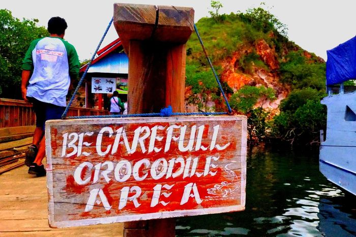 caution Dangerous Wild Rincaisland Wonderful Indonesia Crocodile Warning Sign Real People One Person Outdoors One Man Only Rear View Business Finance And Industry Men Water People