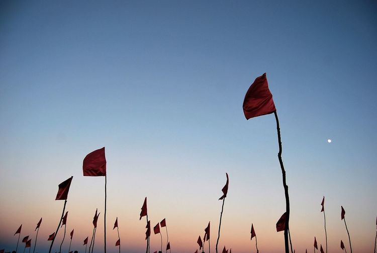EyeEm Nature Lover Flags In The Wind  From My Point Of View Atardecer Sunset_collection Eyeemphotography EyeEm Gallery Eye4photography  Fresh On Market 2016