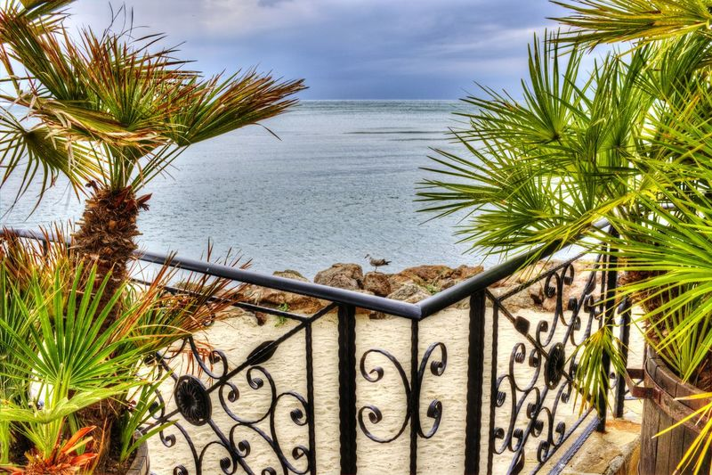 Rocks Seaside Showcase: February Blue Sky Blue Sea Seagull Palm Trees Seaside Summer Memories 🌄 Sands Black Sea Outdoors No People Day Beatiful Nature Tranquility Railing The Essence Of Summer