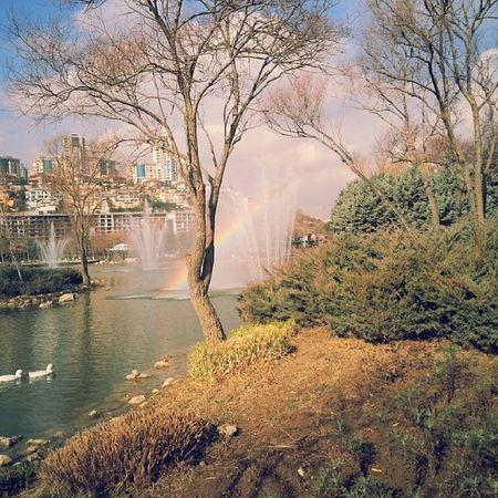 Gölet 1 Nature Natural G ölet Bahcesehir rainbow niceday