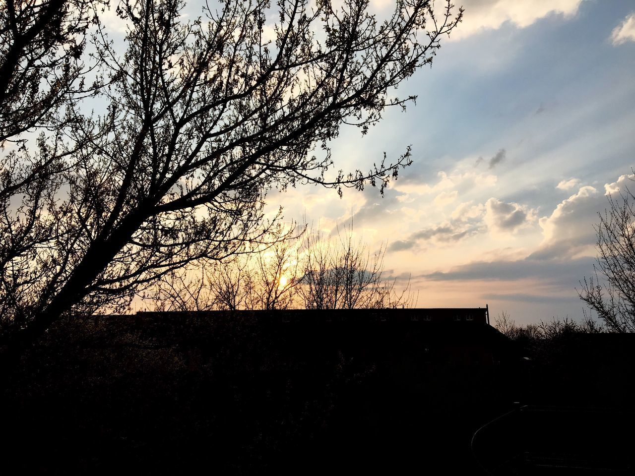 silhouette, sky, sunset, tree, cloud - sky, nature, beauty in nature, no people, bare tree, built structure, scenics, outdoors, tranquility, architecture, building exterior, day