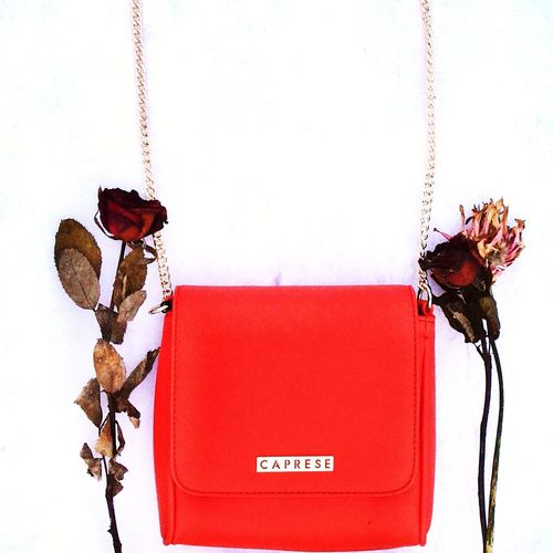 Bag is a life saver. Savvybusinessowner Girlbosslife #photography #beautiful #flower#garden#nature#ecuador#santodomingoecuador#eyeEmfollowers#iphoneonly#nofiltrer#macro_garden#pretty#beautiful#followme#sho #flowers Bag #bags Inspiring Colorsplash Colorlove #orange  #Rose The Fashion Photographer - 2018 EyeEm Awards