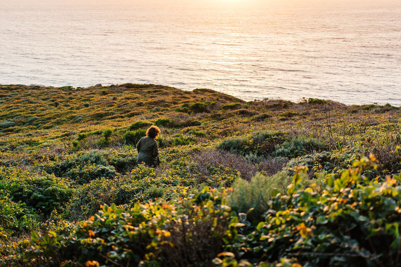 Beauty In Nature Big Sur California Day Grass Growth Idyllic Lakeshore Landscape Leisure Activity Lifestyles Nature Non Urban Scene Non-urban Scene One Person Outdoors Plant Remote Rippled Scenics Sky Sunset Tranquil Scene Tranquility Water