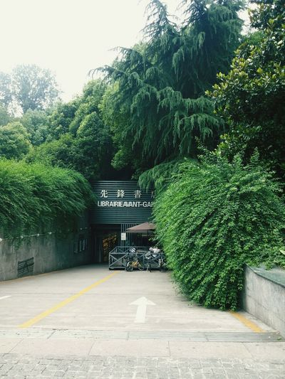 A bookstore called LIBRAIRIE AVANT-GARDE.No.173,Guangzhou Road,Gulou District,Nanjing,China.The most beautiful bookstore all over the world in 2007. Bookstore LIBRAIRIE AVANT-GARDE Books ♥ Pioneer BookstoreGuangzhou Road NanjingNanjing.ChinaGreen Green Green!  Beautiful PlaceGreen Nature