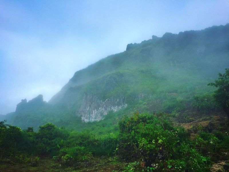 Mountain Nature Beauty In Nature Fog Scenics Landscape Outdoors Day Sky Tree Mountain Range Forest Cloud - Sky Tourism Travel Destinations Scenery Blue Sky Osmeña Peak Cebu City, Philippines