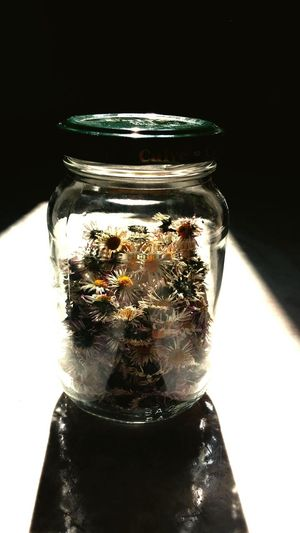 A jar of daisies. Flowers Light And Shadow Having Fun Darkness And Light Sun Through A Window Light And Colors