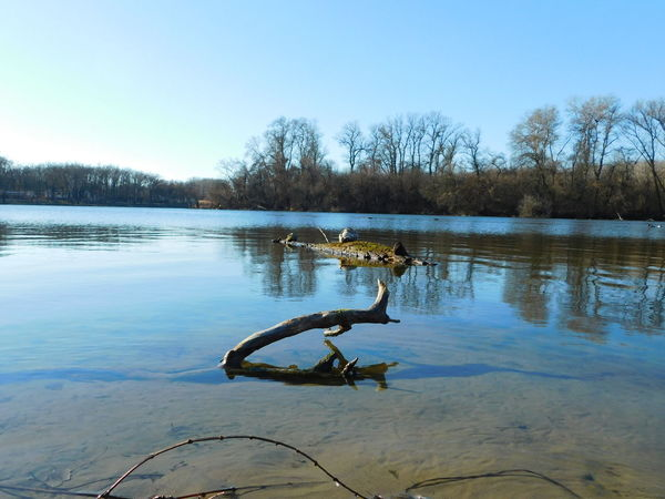 Blue Sky Playing With Sunlight Tisza River Water Wintertime