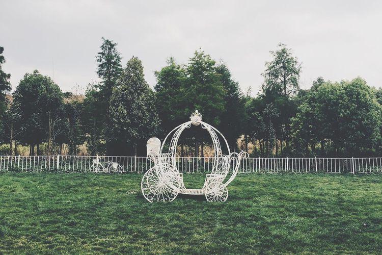 Cinderella Cinderella Fairytale  PhonePhotography Park