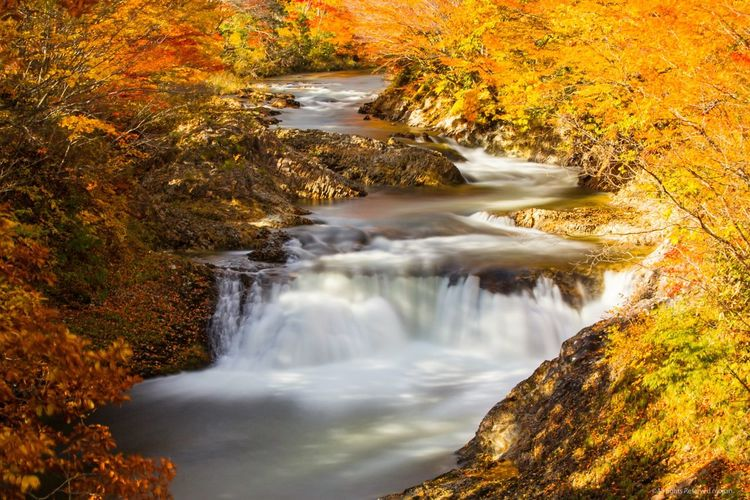 The EyeEm Facebook Cover Challenge Stream Fall Fall Colors Autumn Canon5Dmk3