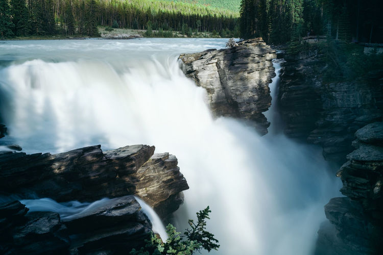 Athabasca River Athabasca Falls Athabasca Glacier Beauty In Nature Blurred Motion Cliff Day Flowing Water Forest Long Exposure Motion Nature No People Outdoors Power In Nature Rapid River Rock - Object Scenics Sky Speed Tree Water Waterfall