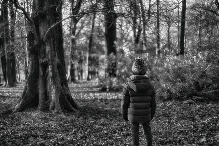 WoodLand Trees Lone Figure Child Alone Monochrome Black And White Forest