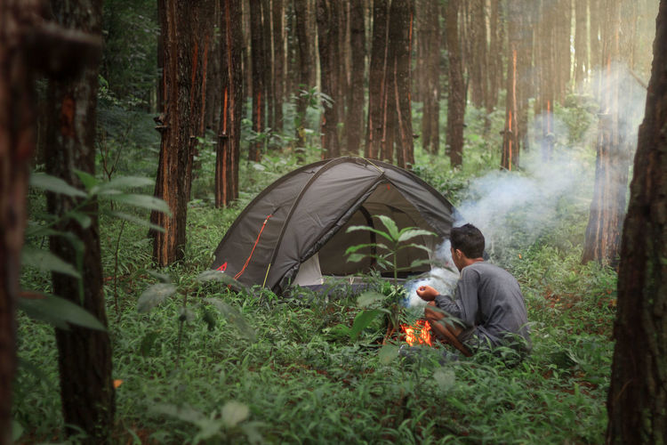 People in tent by trees in forest