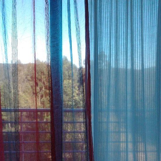 10. Quem nos inspira - Mãe Natureza Mothernature Maenatureza Natureza Nature Window Janela Cortina Transparencia Transparency Desculpashamuitas