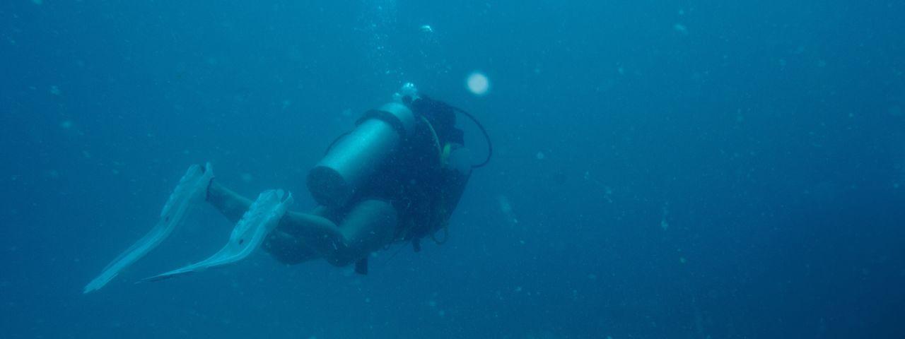 Panoramic view of scuba diver swimming in sea