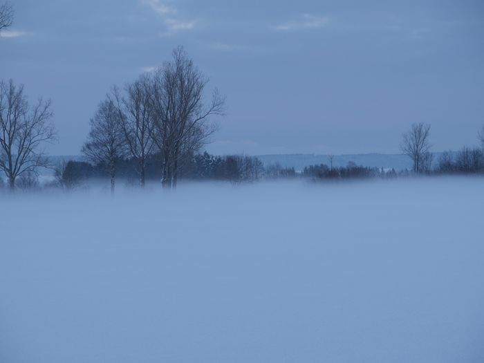 Onmywaytowork Snow ❄ Taking Pictures Wintertime Foggy Morning