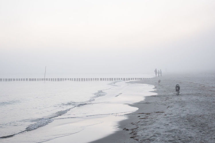 People At Beach Against Sky During Foggy Weather