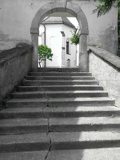 Steps Built Structure The Way Forward Steps And Staircases Architecture Building Exterior Outdoors Black And White With A Splash Of Colour The Great Outdoors - 2017 EyeEm Awards EyeEm Best Shots - Nature EyeEm Masterclass Capture The Moment Exceptional Photographs EyEmNewHere Getting Inspired The Photojournalist - 2017 EyeEm Awards Green Color Getting Creative Best Of EyeEm My Unique Style Hello EyeEm Malephotographerofthemonth Focus On Foreground Eye4photography  Place Of Heart